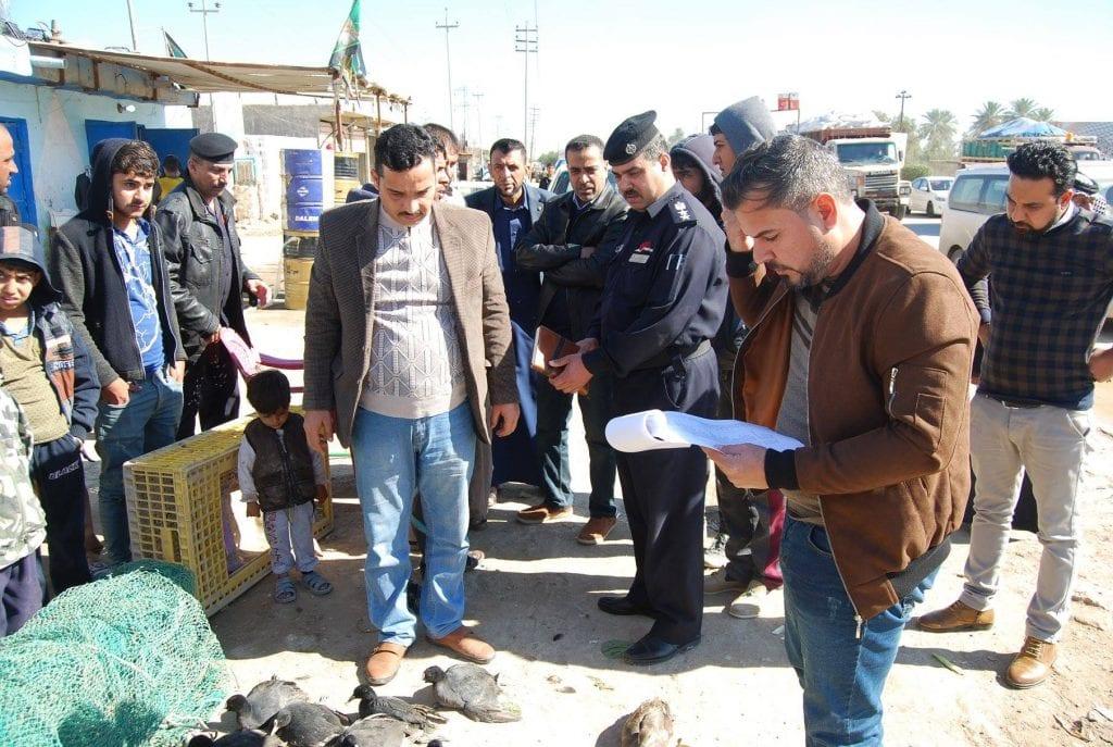 """""""مجازر"""" الطيور المهاجرة: غرامات مالية تنتظر صائدي """"البجعة السوداء"""" وسط العراق"""