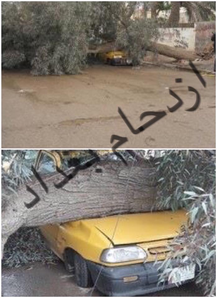 صور: هذه هي اثار العاصفة في بغداد