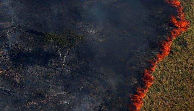 """قلق دولي بشأن """"رئة الأرض"""": الحرائق مستمرة في أكبر مصدر أوكسجين على الكوكب (صور)"""