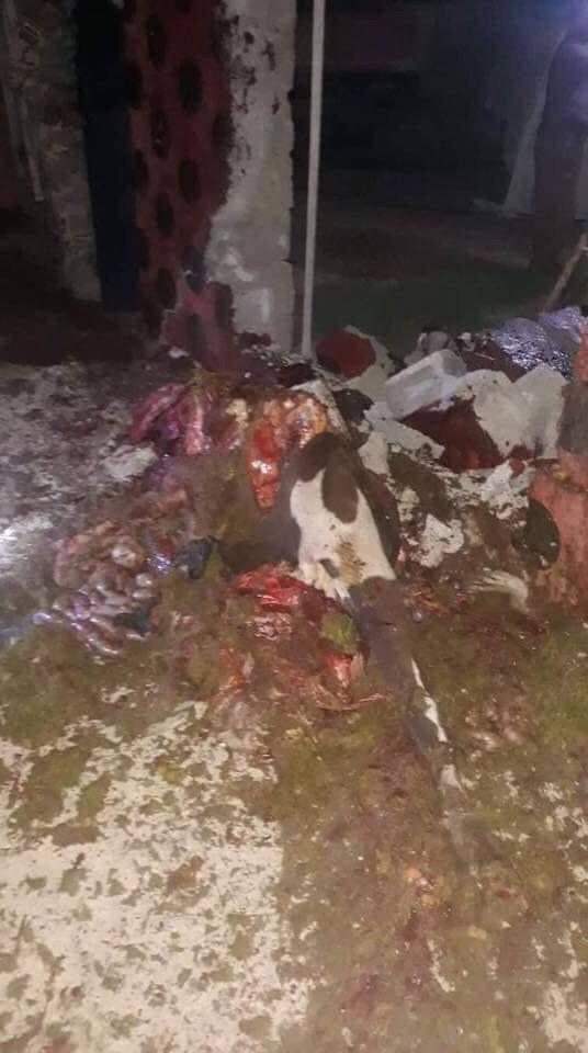 صور: هذا ما خلفه انفجار بقرتين مفخختين في ديالى