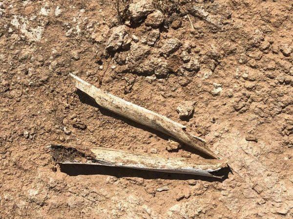 العثور على مقبرة جماعية في الأنبار